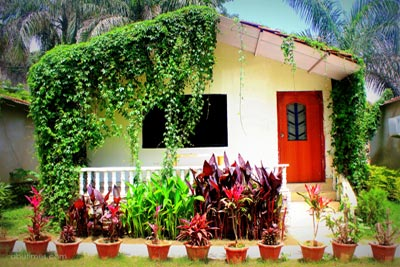 garden-cottages-in-green-view-hotel-mount-abu