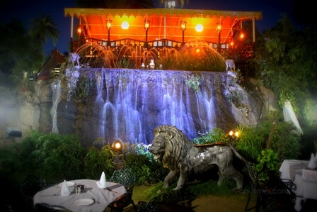 exclusive-machan-restaurant-mount-abu