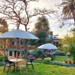 forest eco lodge mount abu